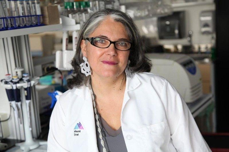Doctora Ana Fernández-Sesma